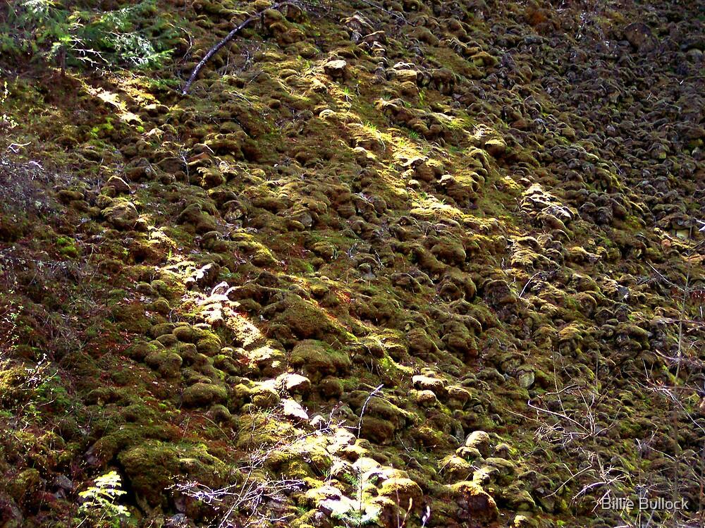Mossy rocks by Billie Bullock