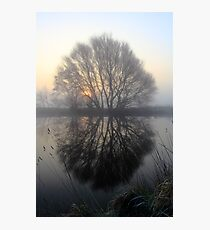 A Pond Reflection Photographic Print