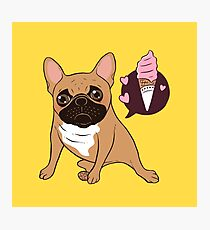 Sweet Golden Fawn French Bulldog puppy wants an ice cream Photographic Print