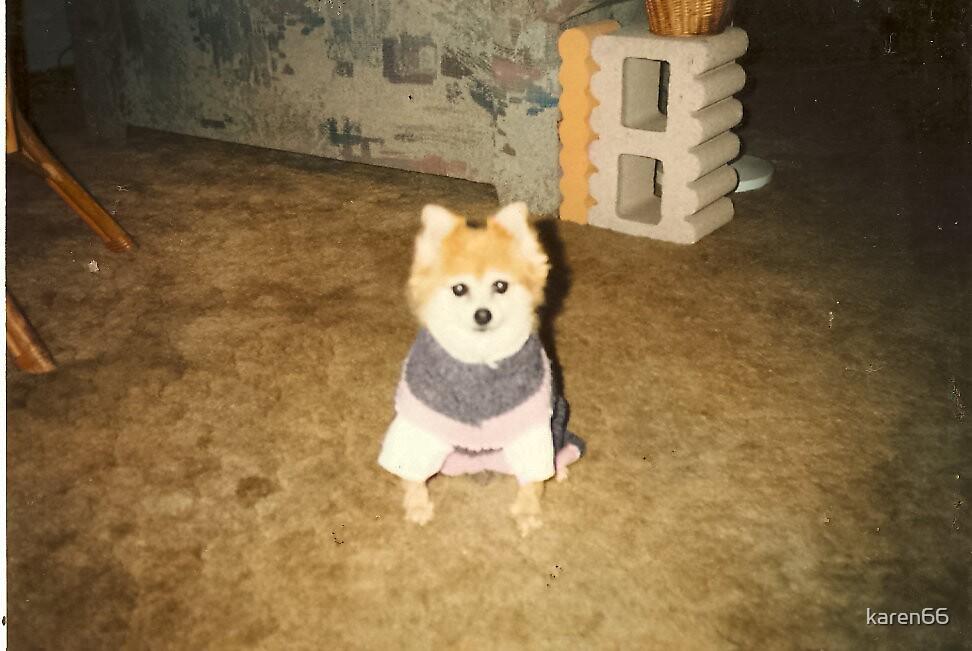 Prissy In Her Sweater by karen66