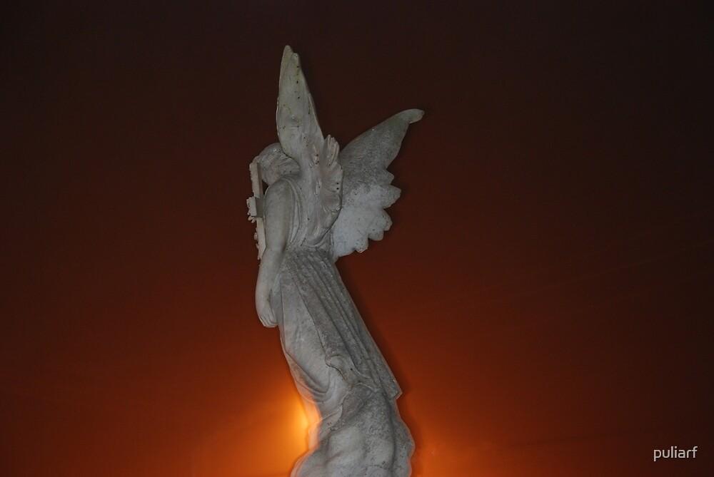 Fire Angel by puliarf