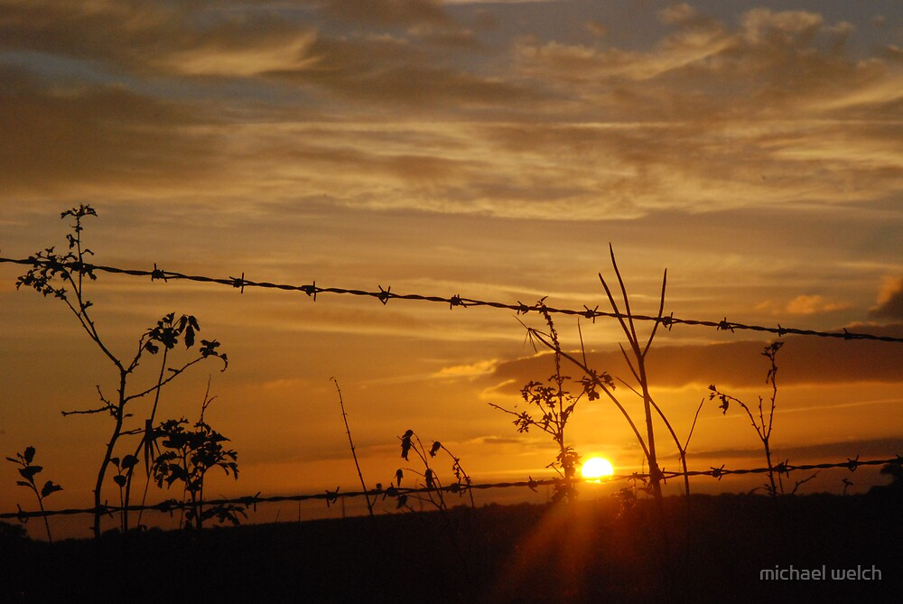 Barbed Wire Sunset by michael welch