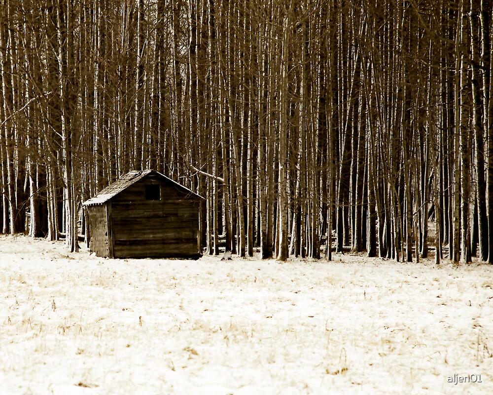The Woods by aljen01
