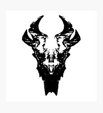 Elder Dragon Skull Photographic Print