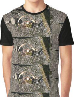 Le carosse de Cendrillon, vu par Dame Nature Graphic T-Shirt