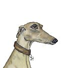 GREYHOUND LOVE g316 by Hares & Critters
