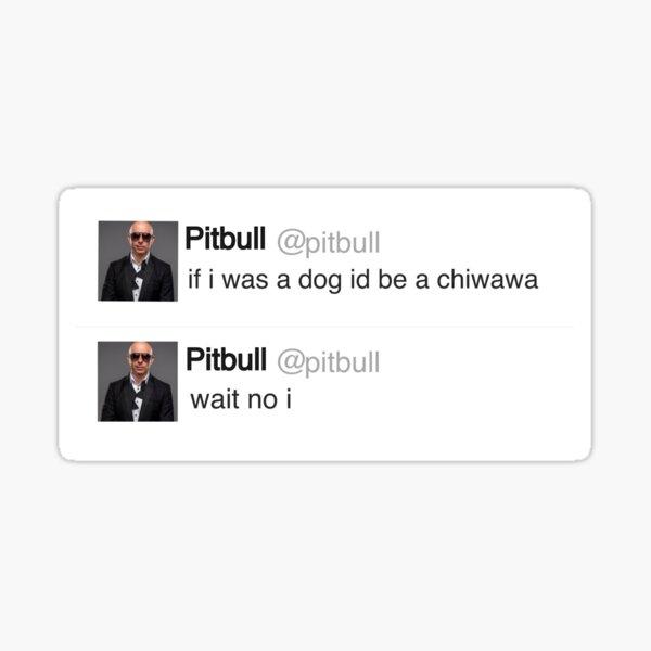 Pitbull tweet Pegatina