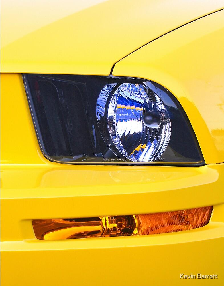 Yellow Pony by Kevin Barrett