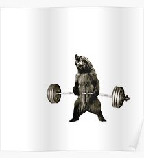 Bear Gains Poster