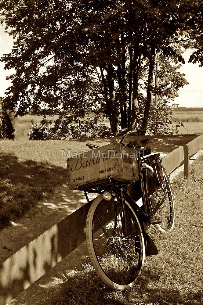 Bicycle Pastorale by Marc McDonald