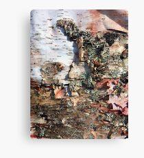 Raw Bark Canvas Print