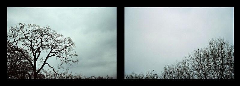 Fall Skyline by Aeyeduh