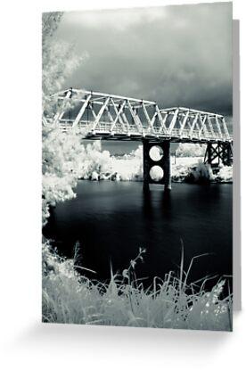 Morpeth  Bridge by Naomi Frost