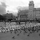 Palomas de Plaza de Catalunya by James2001