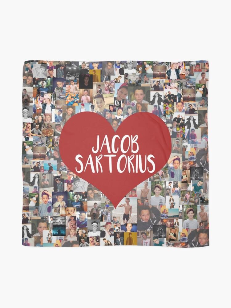 Alternative Ansicht von Ich liebe Jacob Sartorius Tuch