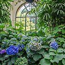 Conservatory Garden by Kathie Thomas
