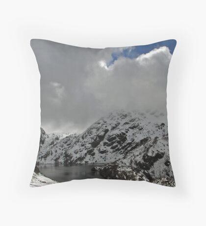 Harris Saddle Throw Pillow