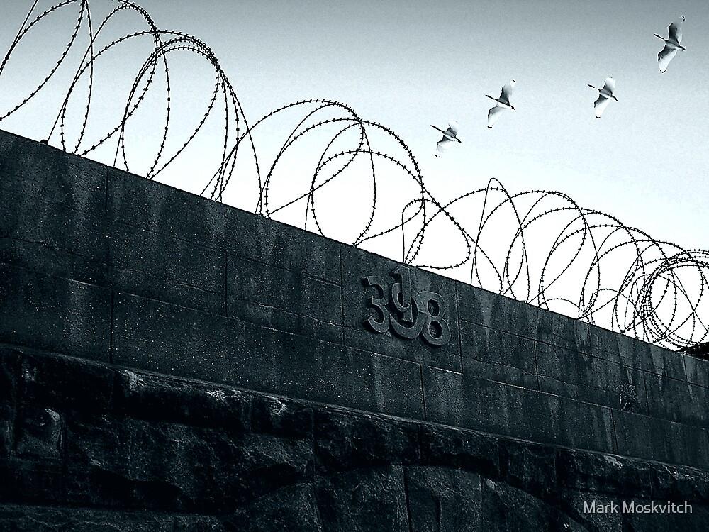 Escape by Mark Moskvitch