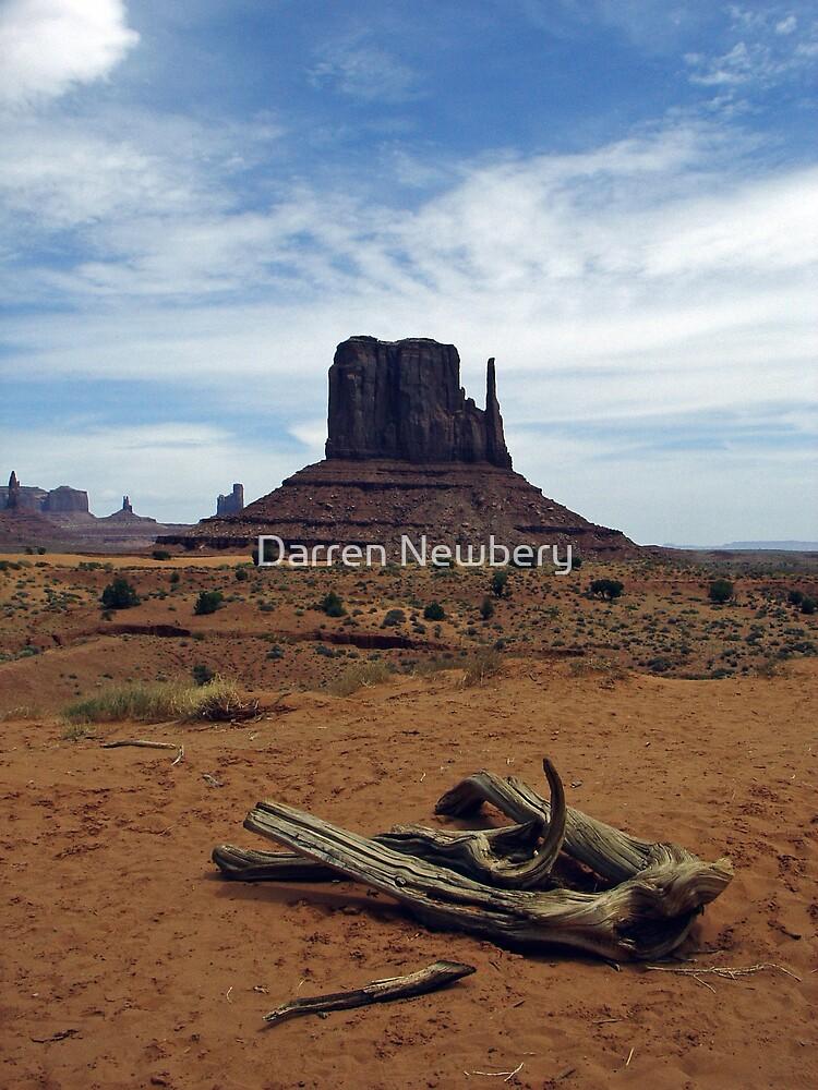 Monument Valley  by Darren Newbery