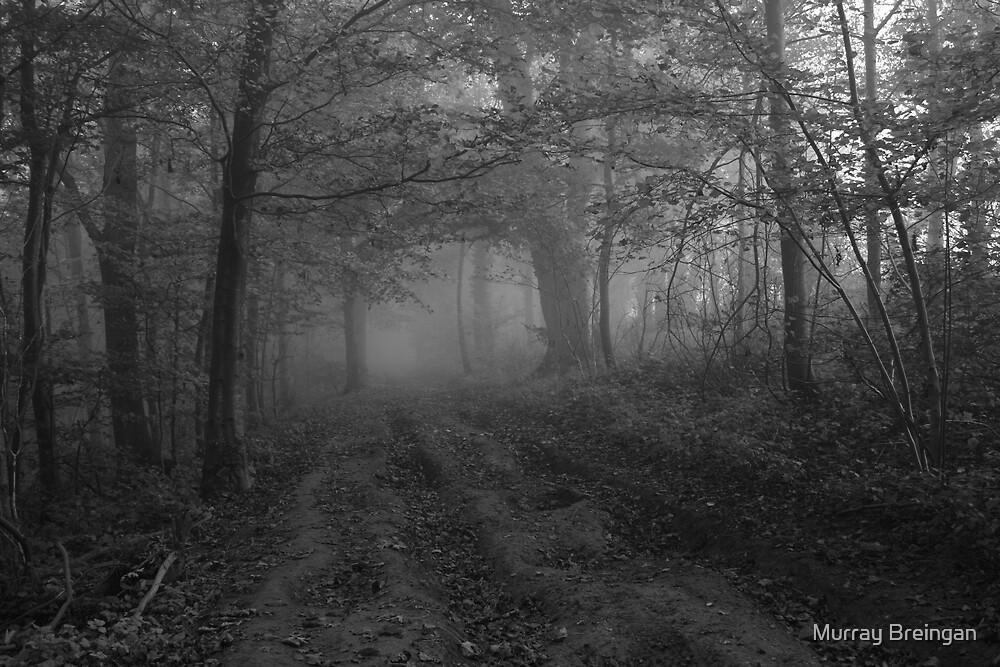 Silent hill by Murray Breingan