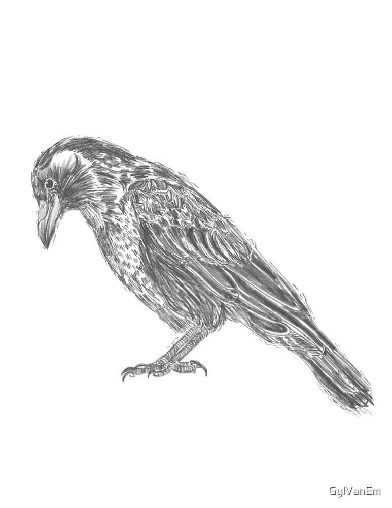 Simple crow  by GylVanEm