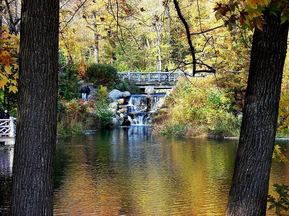 Golden pond by Semmi