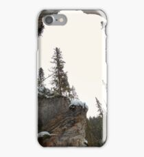 Wide canyon view iPhone Case/Skin