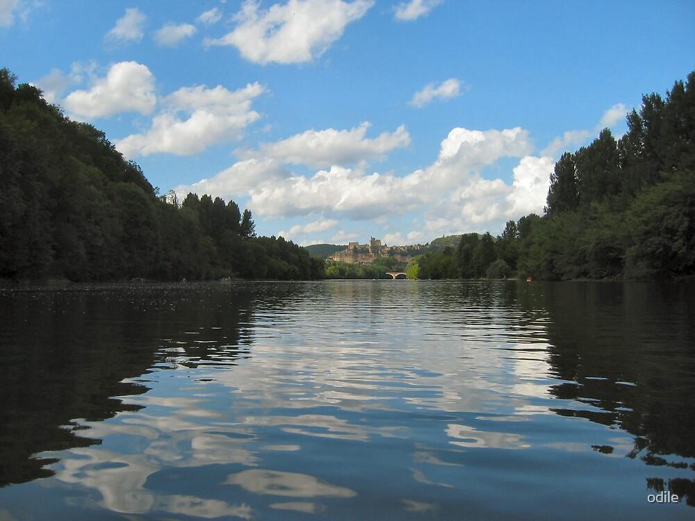 river scene by odile