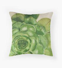 Detail of an Aeonium Succulent  Throw Pillow