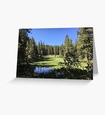 Sierra Nevada Meadow Greeting Card