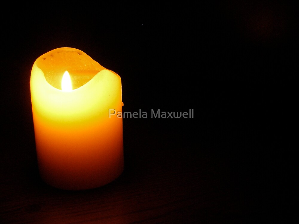 A light in the darkness by Pamela Maxwell