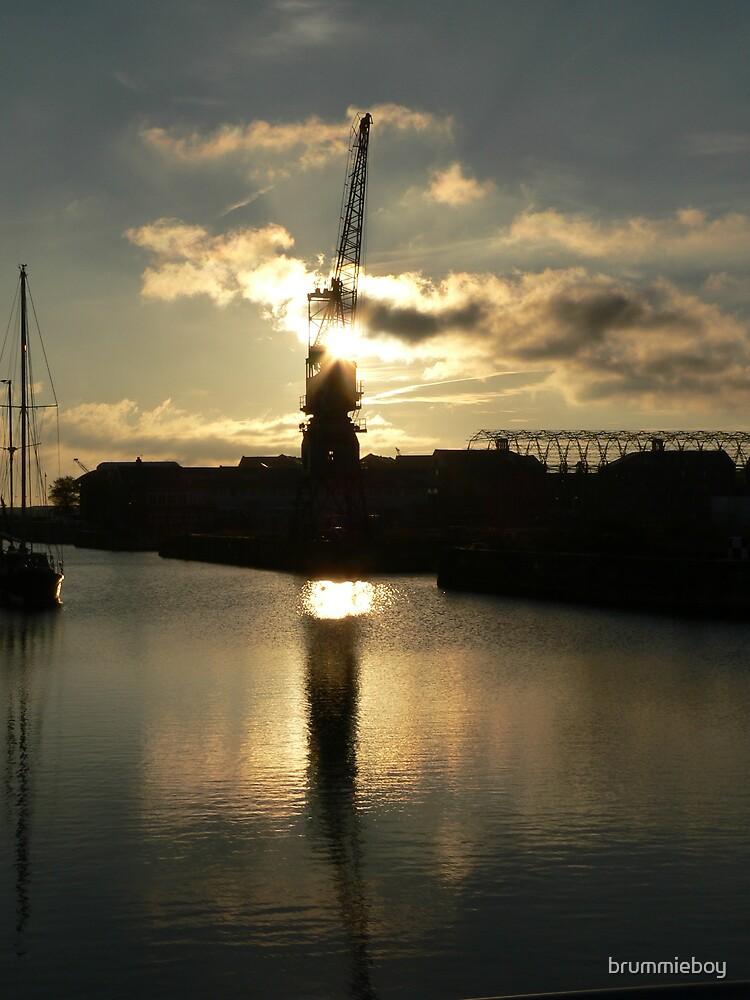 Crane at sunrise by brummieboy