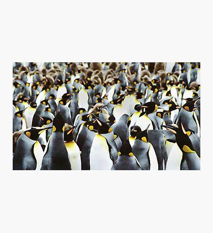 Penguin Power Photographic Print