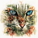 Poppy Cat by Ljartdesigns
