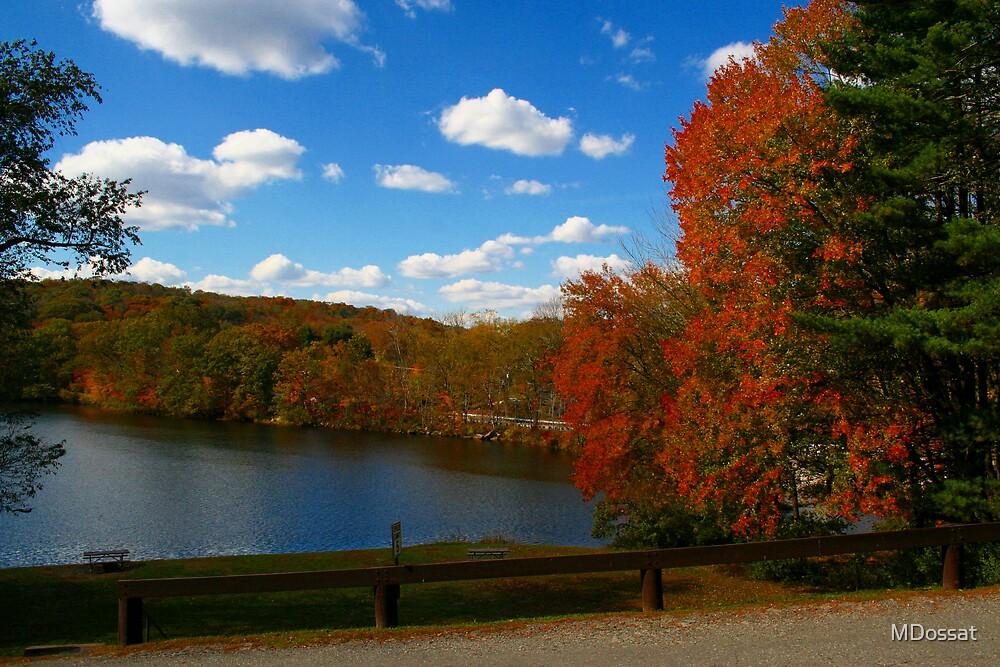 Autumn colors by MDossat