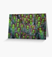 Cactus cluster Greeting Card