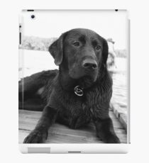 Black Lab iPad Case/Skin