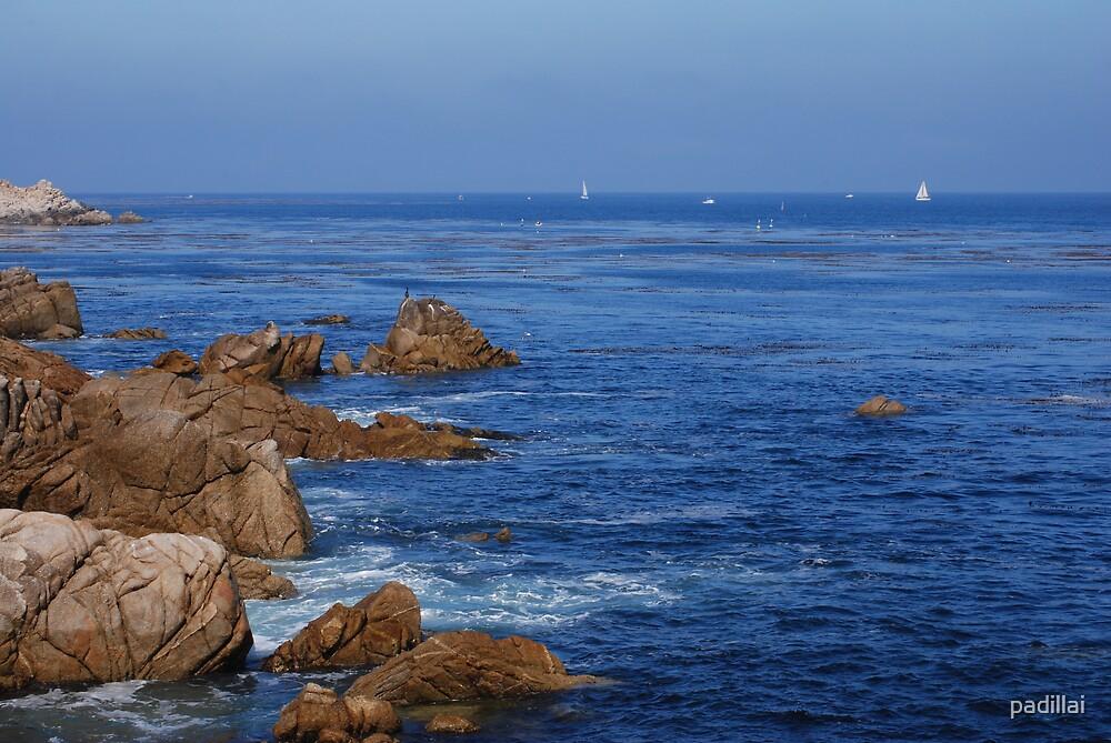 Breathtaking Blue Ocean Scene by padillai