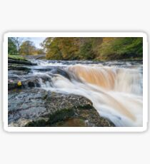 Stainforth force Sticker