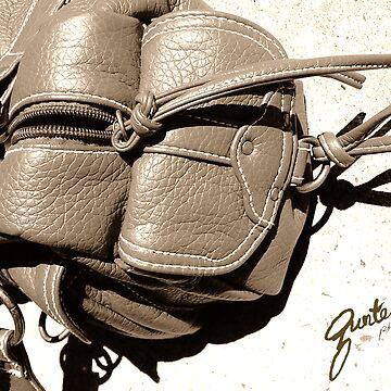 Handbag #1 by gunter