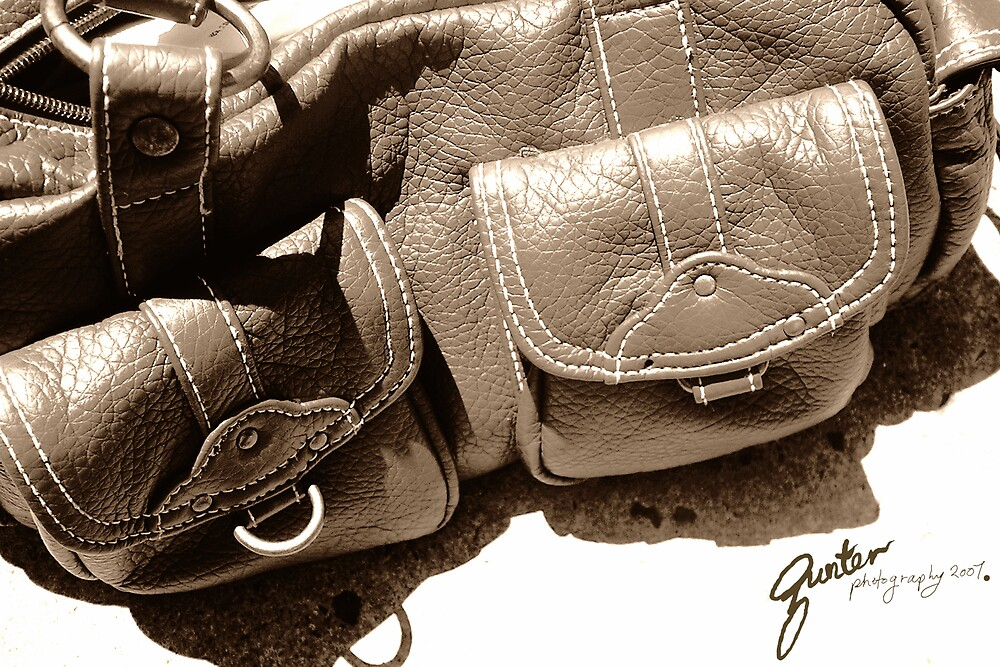 Handbag #2 by Gunter Photography