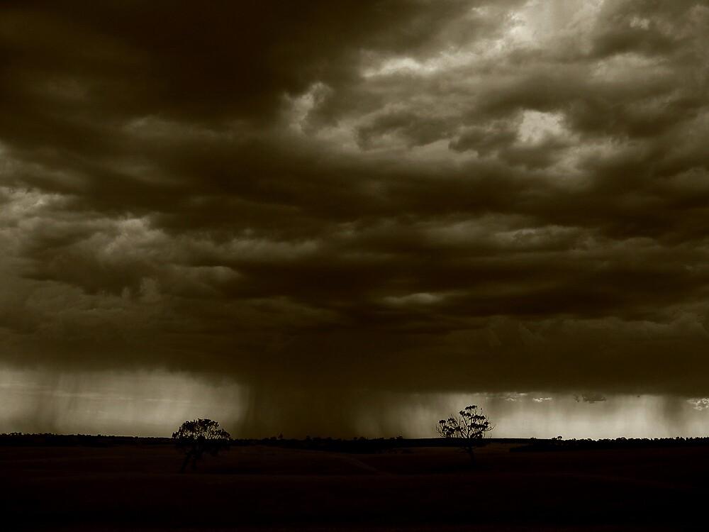 Rain by Andrew Edgar
