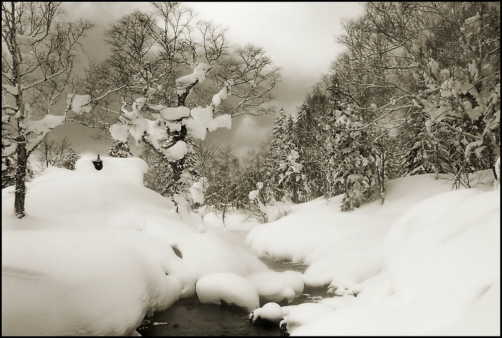 Daisetsuzan Snow Scene by Robert Mullner