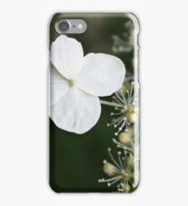 Fabulous flora iPhone Case/Skin