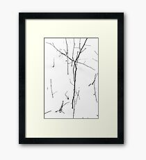 Winter Twigs 1 Hight Contrast Framed Print