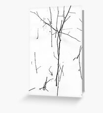 Winter Twigs 1 Hight Contrast Greeting Card