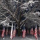 American Flags  by ChereeCheree