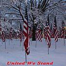 United We Stand ~ Flags by ChereeCheree
