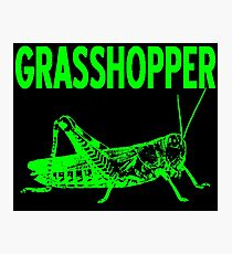 GRASSHOPPER-2 Photographic Print