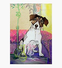 Dogs Life serie - Candy lover Photographic Print